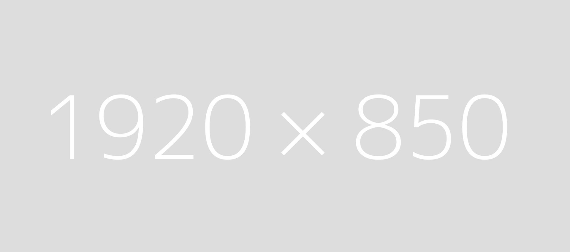 1920850dummy